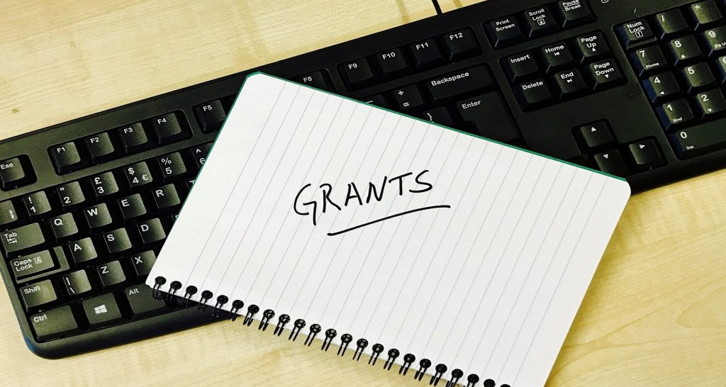 From ideas to action: discussion on how to write a grant